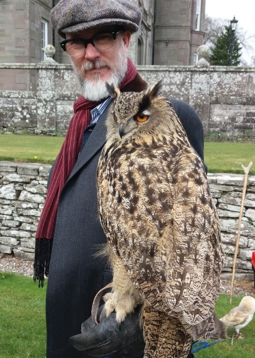 Falconry in Action